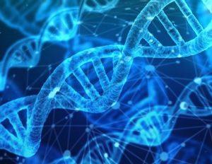 microbiome imbalance testing